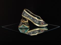 Emperor's Slippers
